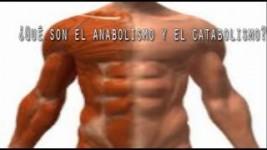 Puntos importantes para Desintoxicarse del Catabolismo y Anabolismo