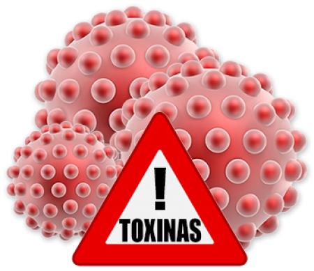 2531_toxinas