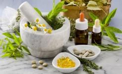 La homotoxicología, partiendo de los principios fundamentales de la homeopatía.